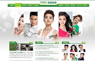 广西南宁青檬文化传播有限公司网站建设