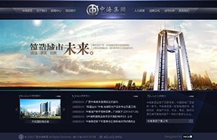 广西中海集团网站建设