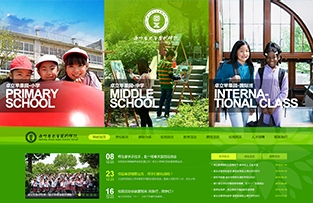 南宁卓立苹果园学校网站建设